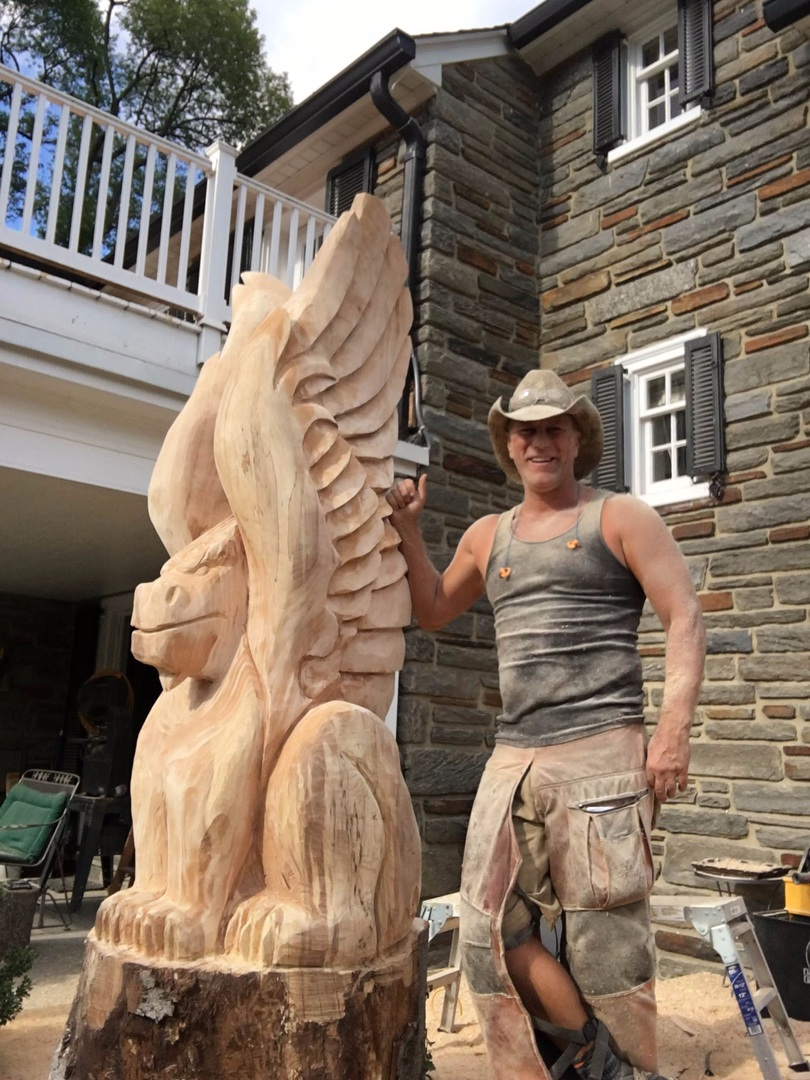 Chainsaw carving by paul various