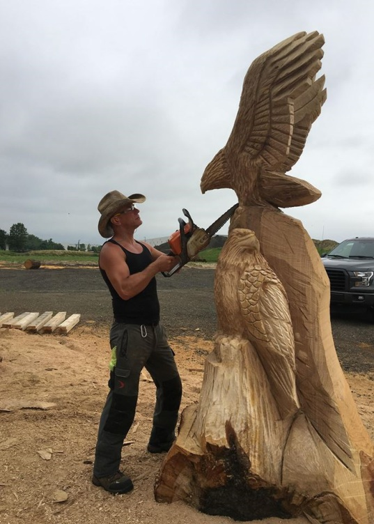 Chainsaw carving by paul eagles