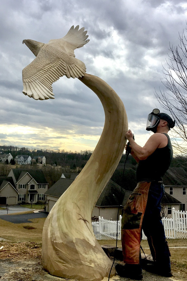 Chainsaw carving by paul carving process